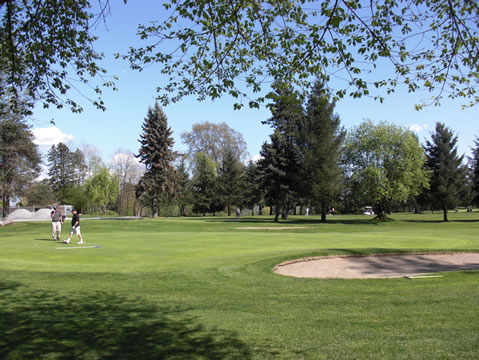 Maple Ridge Golf Course Specials