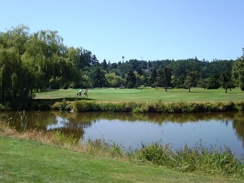 Tsawwassen Springs Golf Club Specials
