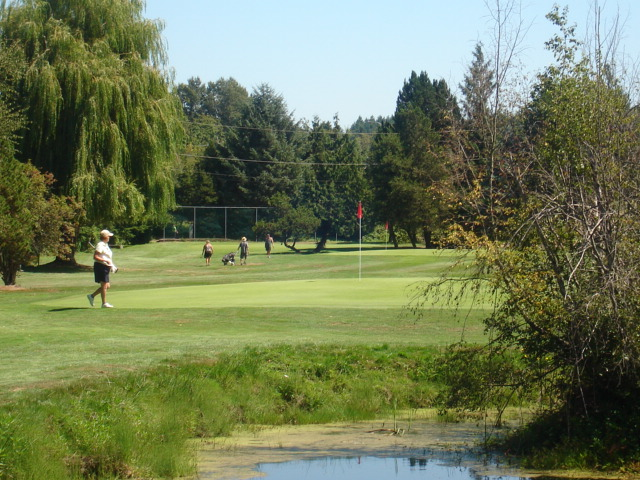 Sunshine Woods Golf Centre Specials