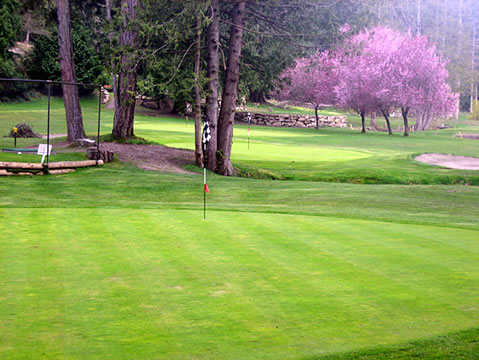 Galiano Golf and Country Club Specials